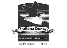 Indiana Dunes Pendleton Blanket Patch